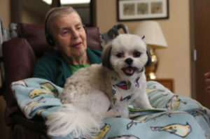 Living With Wonder: How Sensory Experiences Impact Elders